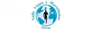 Vija Viajes Logo